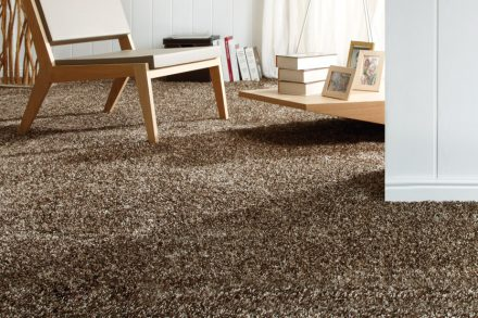 SAXONY CARPET: PROS AND CONS
